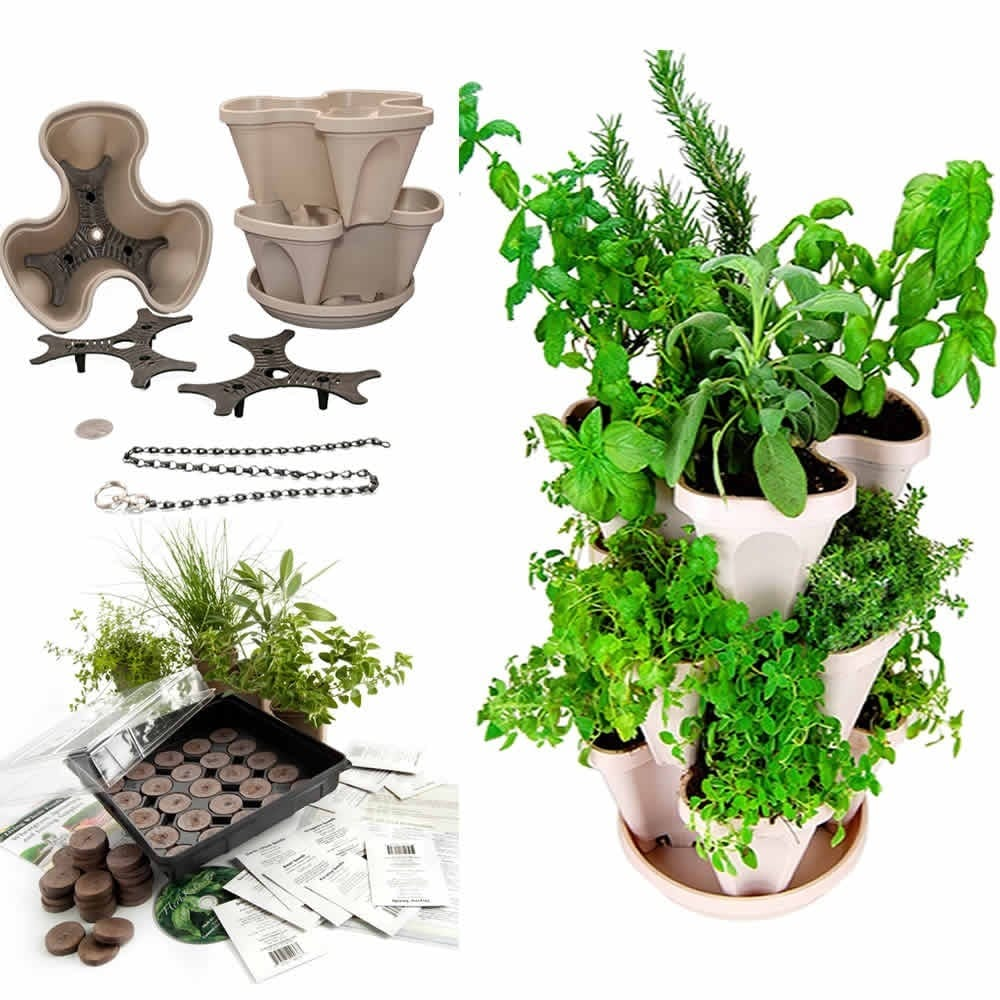 Planter For Herbs Indoor Herbal Tea Herb Garden Starter Kit Self Watering Planter