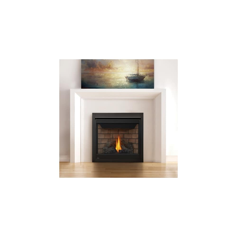 Btu Gas Fireplace Napoleon B35te 20000 Btu Built In Direct Vent Natural Gas Fireplace With Safety Barrier And Electronic Ignition From The Ascent