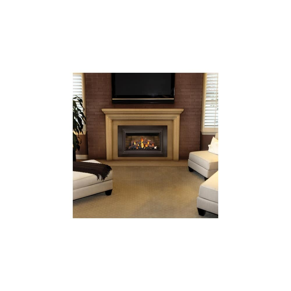 Btu Gas Fireplace Napoleon Gdizc Sb 24000 Btu Insert Direct Vent Natural Gas Fireplace With Safety Barrier And Millivolt Ignition From The