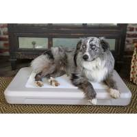 Shop Chillspot Dog Cooling Bed - Free Shipping On Orders ...