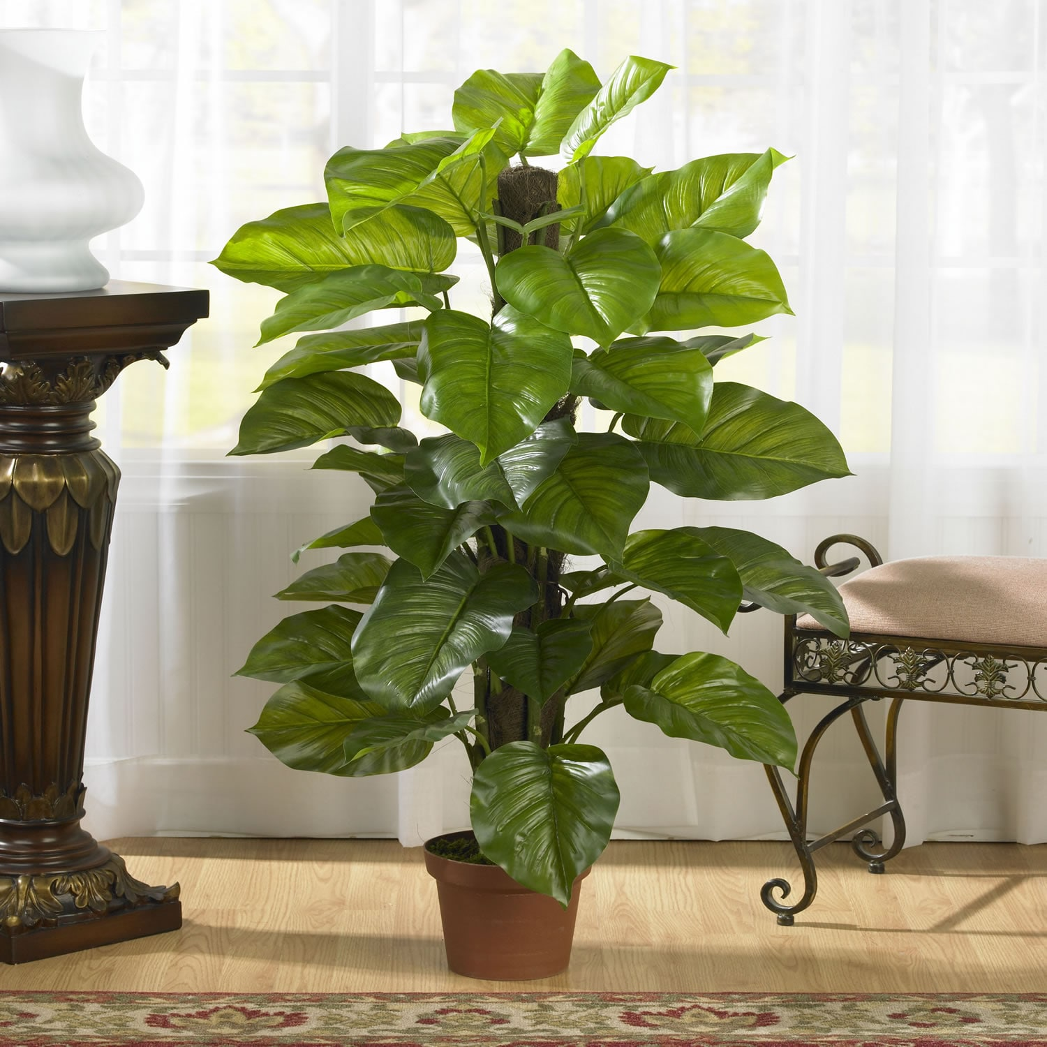 Large Indoor House Plants For Sale Shop Large 52 Inch Leaf Philodendron Silk Plant Real