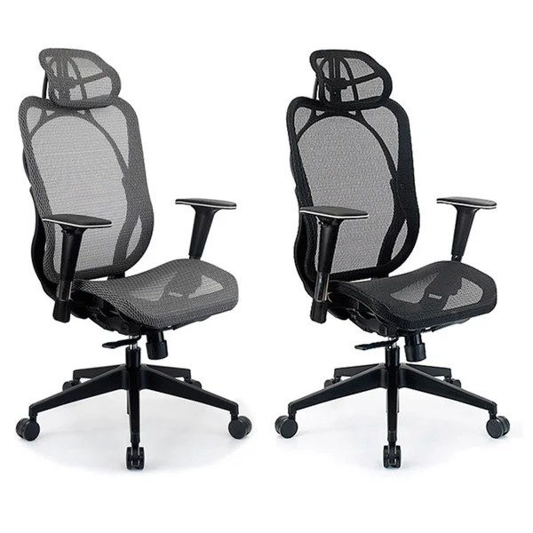 Ergohuman Mesh Ergonomic Chair Integrity Seating Ergonomic Mesh High Back Executive Office Chair - 13982107 - Overstock.com ...