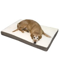 Orthopedic Dog Beds On Sale. Shop Pet Lounge Bamboo ...