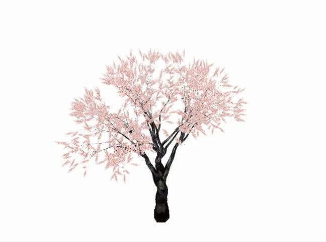 Cherry Tree Growing Animation Against Stock Footage Video (100