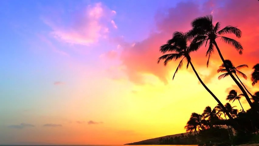 Fall Landscape Computer Wallpaper 4k Incredible Sunset Tropical Beach Stock Footage Video