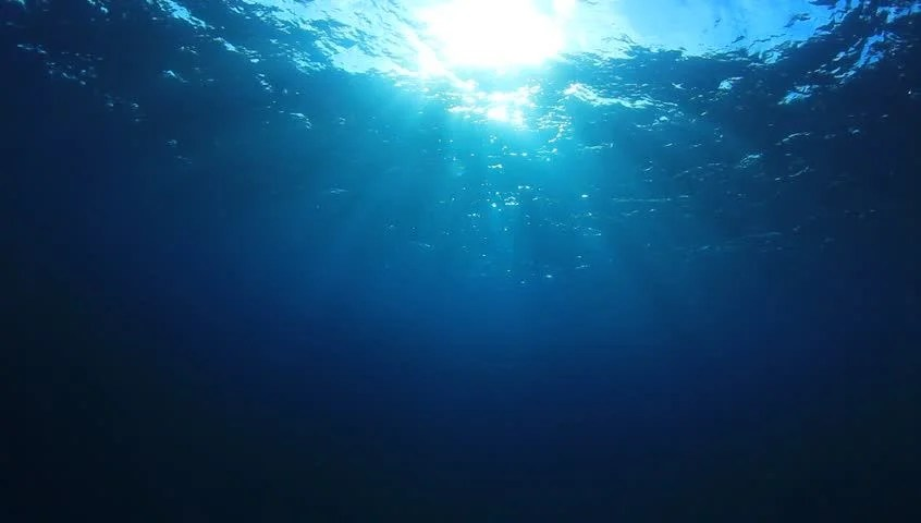 3d Wallpaper Under The Sea Looping Animation Of Ocean Waves From Underwater With