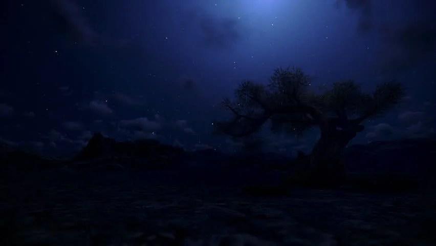Rainy Fall Wallpaper Moon Moonshine Moon Night Sky Mystic Spooky Scary Tree