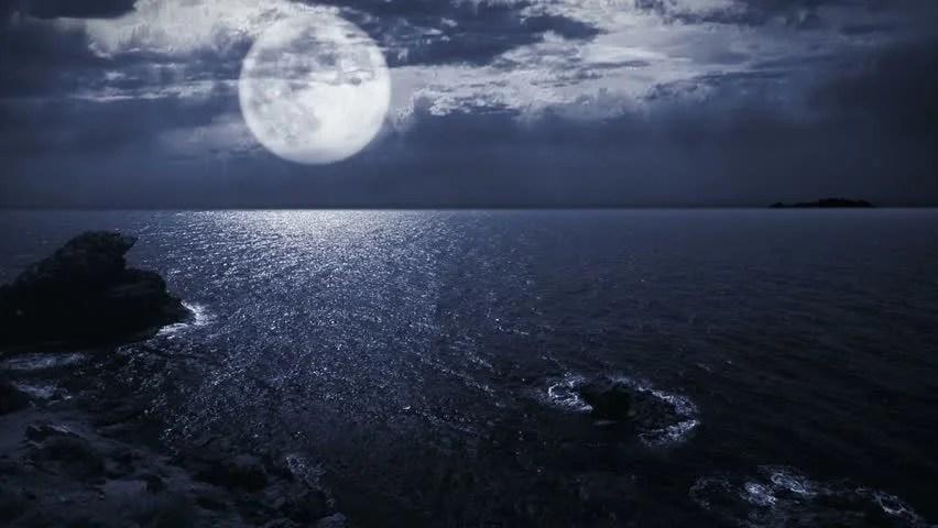 3d Fireflies Live Wallpaper Stock Video Of Full Moon Night Seascape Landscape