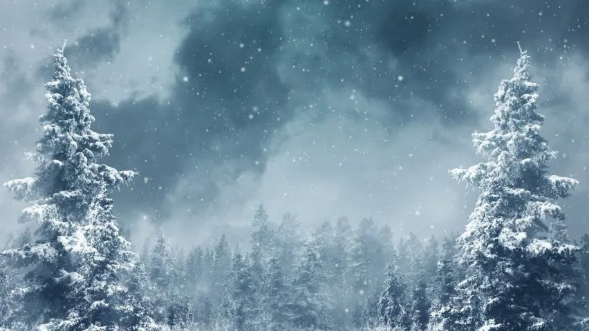Christmas Snow Falling Wallpaper Stock Video Of Winter Landscape Background Animation With