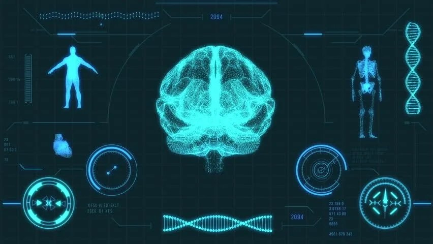 3d Hologram Wallpaper App Human Skeleton Scan Futuristic Medical User Interface