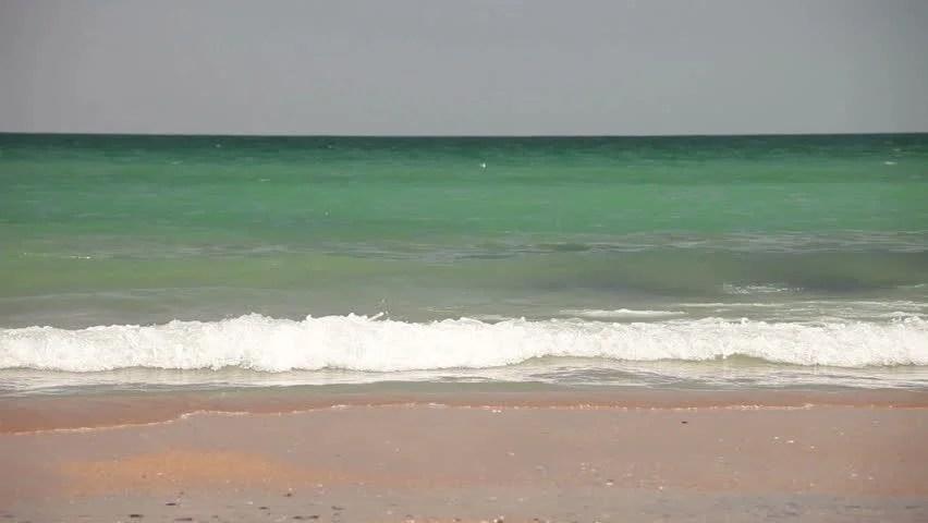Ocean Waves Washing Beach Sunny Stock Footage Video (100 Royalty
