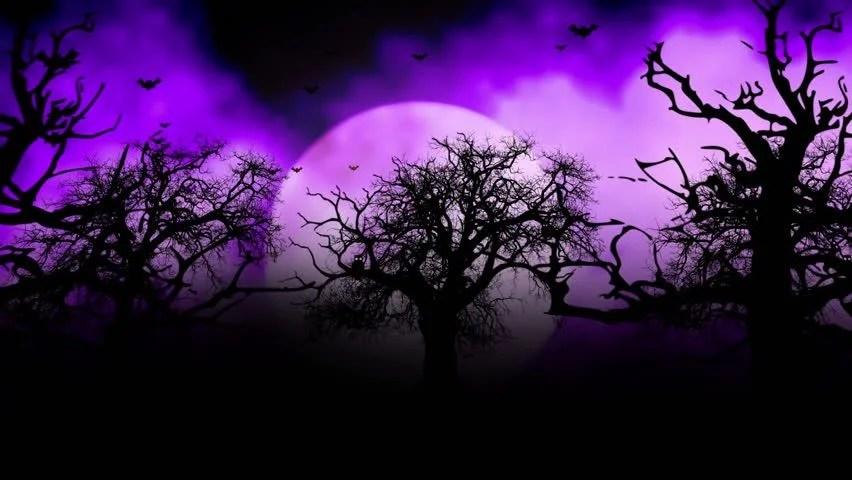 Stock video of animated stylish background useful for halloween