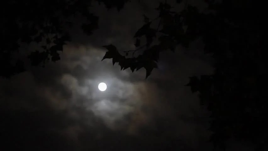 Hd Wallpaper Texture Fall Harvest Stock Video Of Full Moon Amp Cloudy Sky 4972688