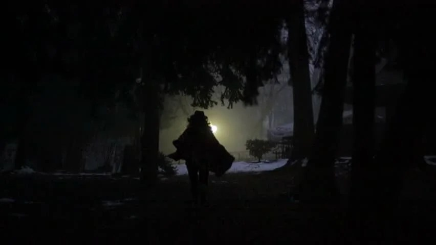 Dreamy Girl Wallpaper Night Woman In Mysterious Forest In A Raincoat With A