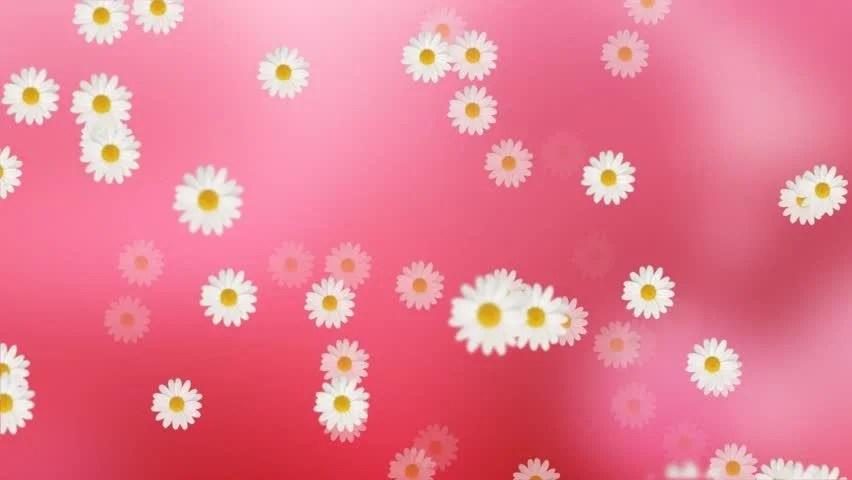 Beautiful Flowers Video Background Loop Free Hd - Flowers Healthy