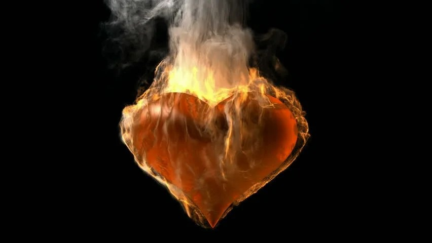 Shutterstock Wallpaper 3d Burning Heart Rendered In Png With Alpha Channel Stock