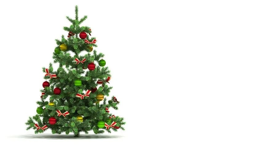 hd0028Beautiful Christmas tree looped isolated on white background
