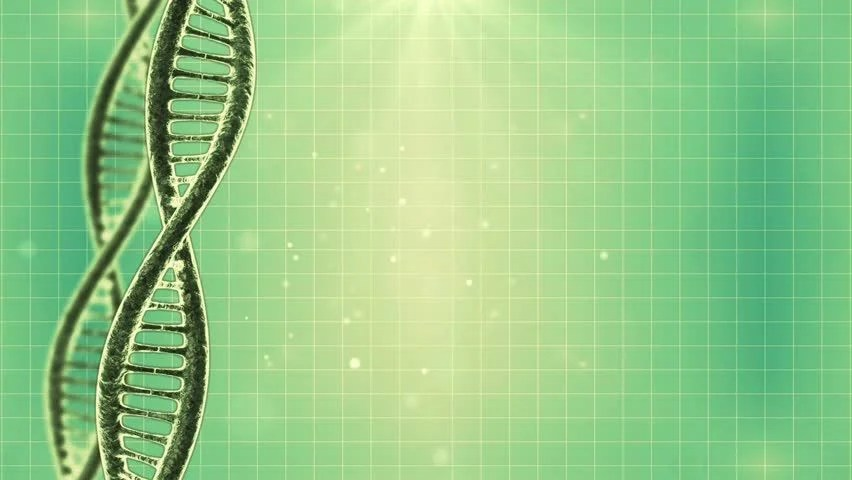 Evolution Hd Wallpaper Stock Video Of Looping Science Green Background With Dna