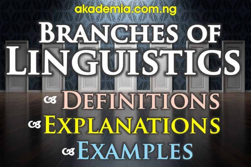 Branches of Linguistics (with Definitions, Explanations and Examples