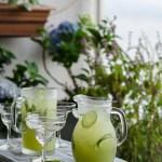 gin rickshaw
