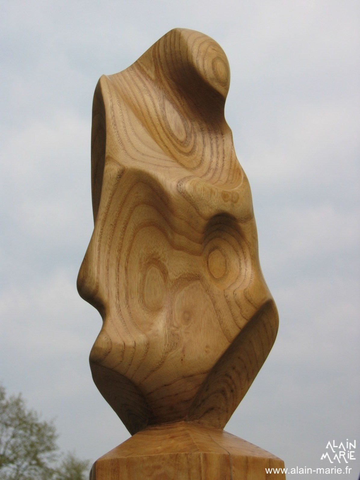 Galet, Frêne 43x15x15