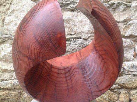 Séquoia h.50x36x458 cm