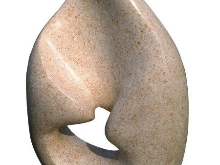 Galet, pierre de Bourgogne 36x11x25 copie