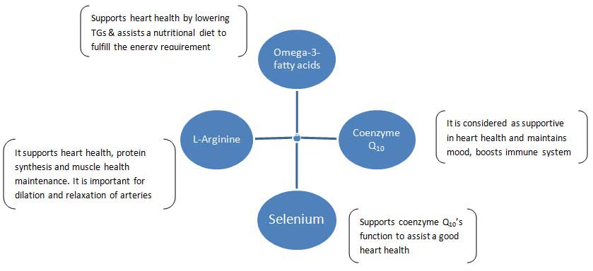 Alaina Pharma - Omega 3 Fatty Acid, Coenzyme Q10, L-Arginine and