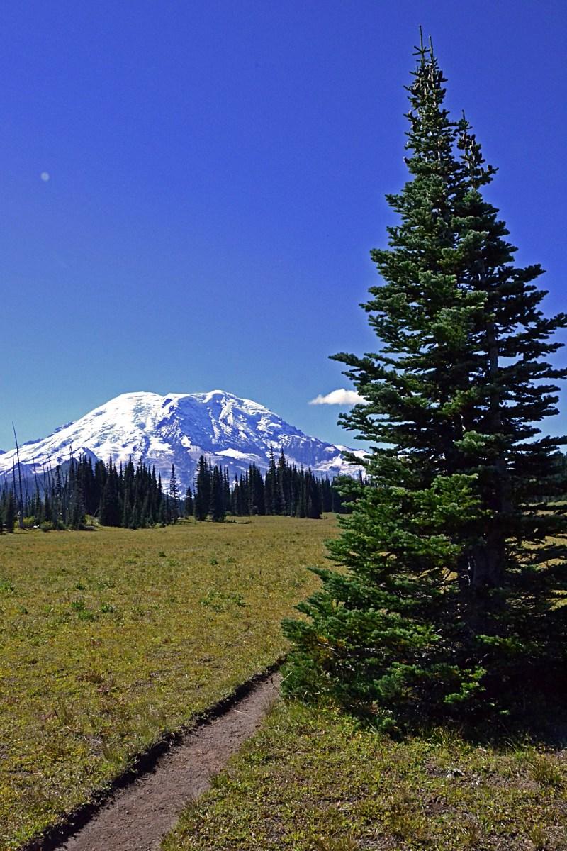 Grand Park to Backdoor of Mount Rainier