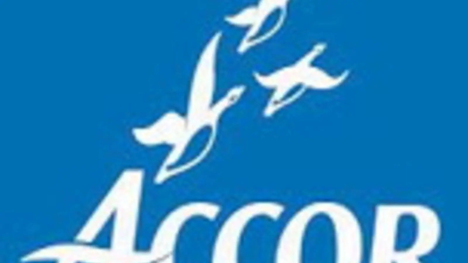 Accor Group Accor Aims At Becoming Largest Hotel Group In Middle East Al Bawaba