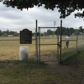 Albion Dog Park