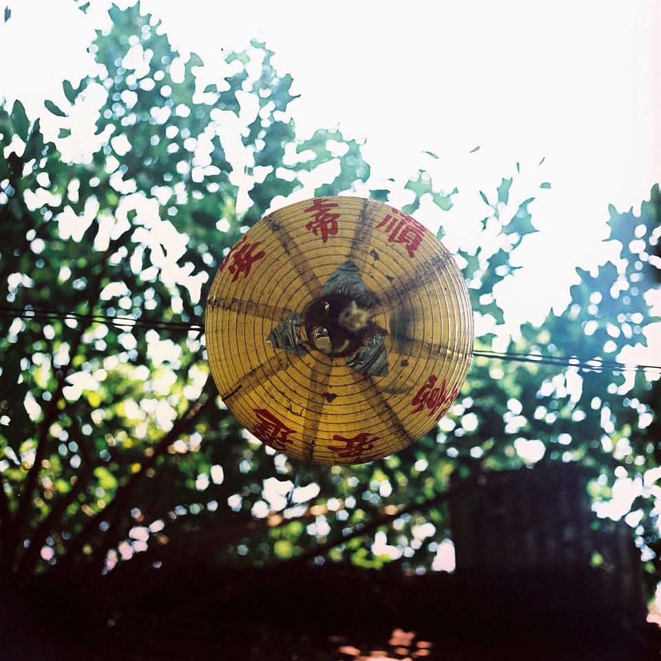 2016-07-12 - Underside - Kodak EKTACHROME E200 shot at EI100. Color reversal (slide) film in 120 format shot as 6x6. Expired and cross processed.
