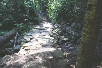 Stone path in woods