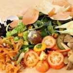 Pemanfaatan Sampah Organik