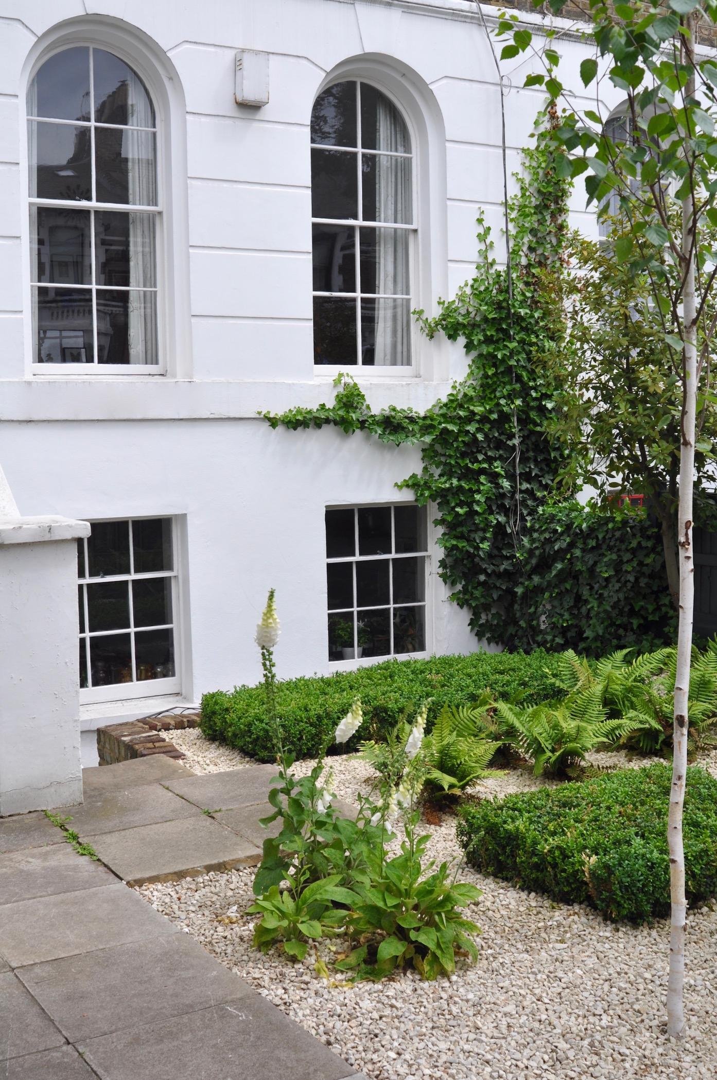 City front garden – Alex Mitchell: the Edible Gardener