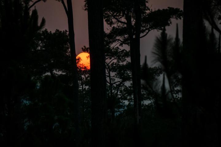 Kirirom sunset