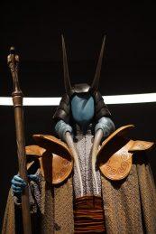 starwars_costume_13