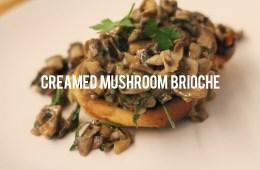Creamed Mushroom Brioche
