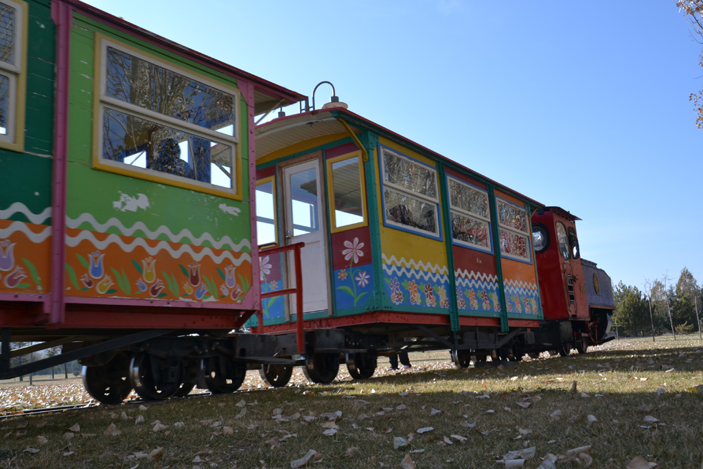 Narrow gauge train