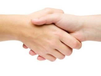 Handshake isolated on a white background.