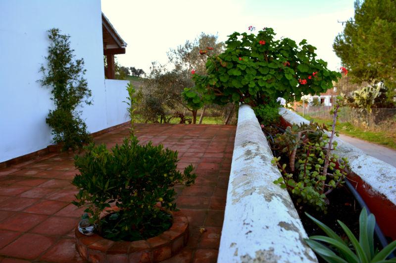Detalle Patio Trasero Villa Madrigueras Casa Rural