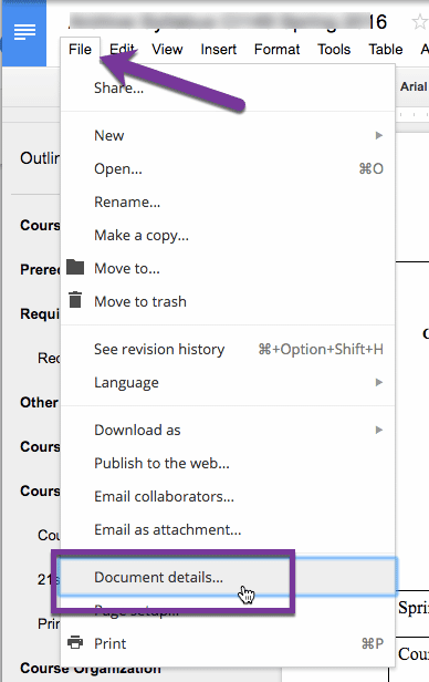 File menu document details