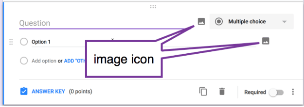 image icon in Google Forms