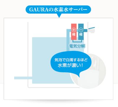gaurasuiso2