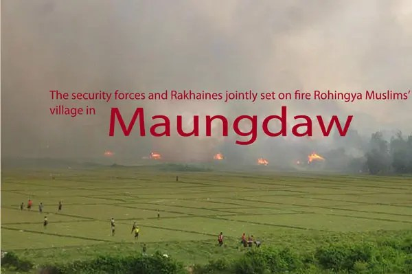 rohingya-flee-from-Maungdaw