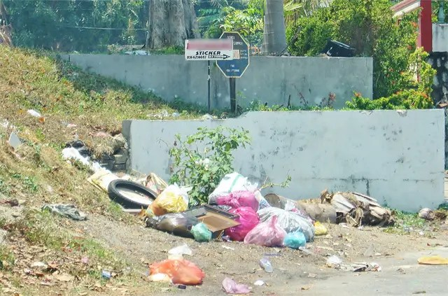 The larger picture. Notice the signs above the illegal rubbish dump - Photograph: Jiran