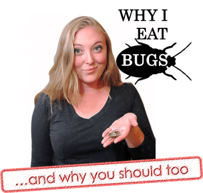 Why I Eat Bugs-- and Why You Should Too