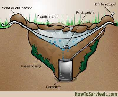 5 Awesome Diy Emergency Ways To Filter Water In The Wild