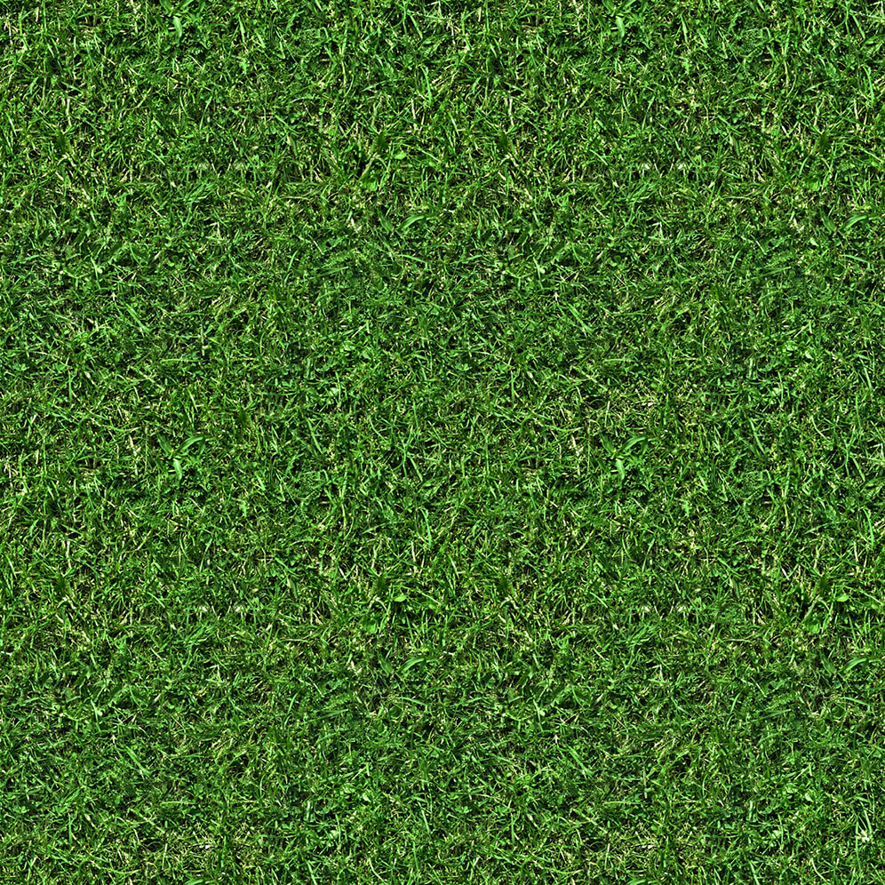 3d Texture 3d Textures Grass Collection Free Download Page 01