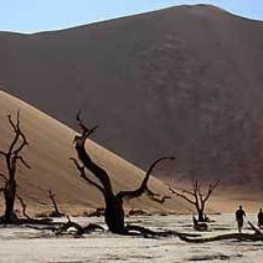 The dead trees of Sossusvlei in Namibia
